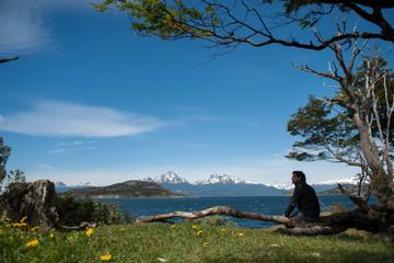 Tierra del Fuego National Park Private Half-Day Trip