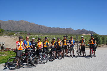 Wine Route Bike Tour from Cafayate