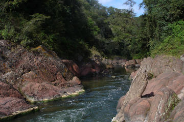 Yungas and El Rey National Park 4x4 Full Day Tour from Salta