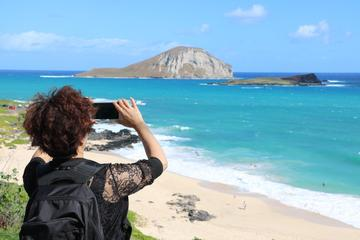 Oahu Circle Island-Tour in kleiner ...