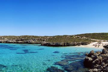 Rottnest Island Roundtrip Fast Ferry from Hillarys Boat Harbour