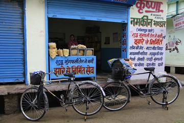 Udaipur by Cycle