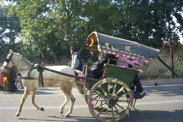 Udaipur - Walk for the Tongawallahs