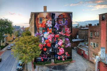 Book Kingston and Hudson Valley Street Art Mural Private Tour on Viator