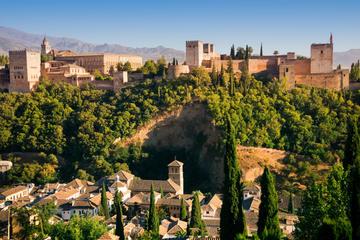 Entrada Evite las colas a la Alhambra...