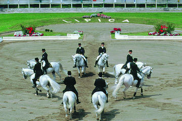 JOIN THE LIPIZZANER HORSE SHOW from...
