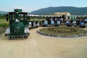 Tour enologico nella Valle Konavle da Dubrovnik con viaggio in treno
