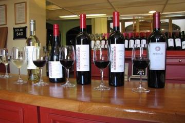 Excursão de degustação de vinho em Luján de Cuyo saindo de Mendoza