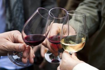 Excursión de cata de vinos en Luján de Cuyo desde Mendoza