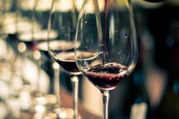 Excursión de un día para conocer el vino del Valle de Uco desde...