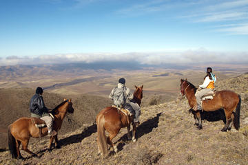 Mendoza Horseback Riding Tour with Traditional Argentine Asado
