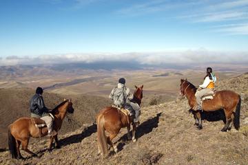 Paseo a caballo en Mendoza con asado argentino tradicional