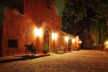 Recorrido de cata de vinos y aceite de oliva de Mendoza con cena