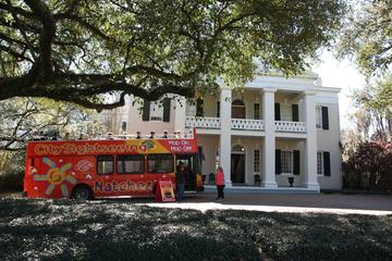 Book City Sightseeing Natchez Hop On Hop Off Tour on Viator