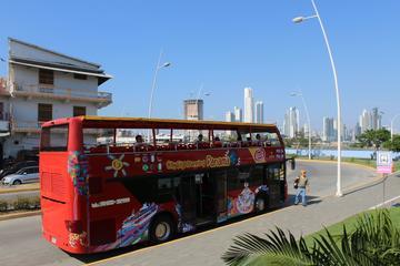 Excursión turística en autobús con...