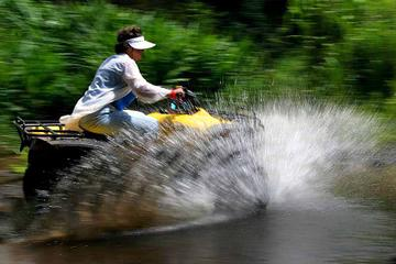 Big Island ATV-Tour durch Waipio Valley
