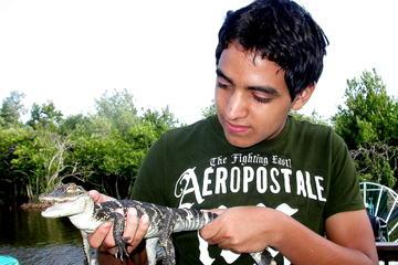 Excursão para grupos pequenos: Aventura familiar no Everglades saindo...