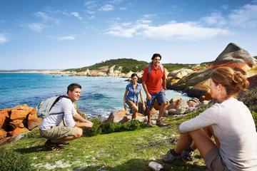 4-tägige Tasmania East Coast Tour ab Launceston