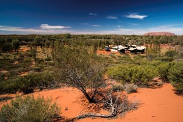 Camping-Ausflug in kleiner Gruppe mit Übernachtung am Uluru (Ayers...