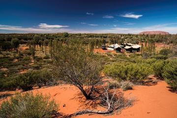 Excursão para grupos pequenos com acampamento noturno em Uluru (Ayers...