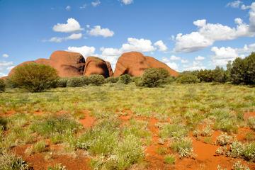 Tour de acampada 4x4 de 4 días de duración: Uluru, Kata Tjuta y Kings...