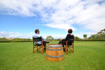 Excursão para degustação de vinhos e comida para grupos pequenos por...