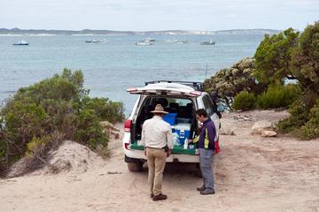 Tour en 4x4 para grupos pequeños a la Isla de los Canguros desde...