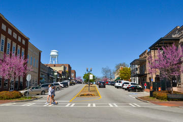 Book Big Zombie Walking Dead Tour in Senoia on Viator