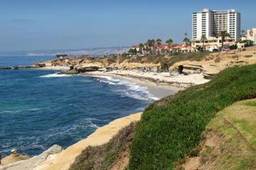 Tour panoramico di San Diego con crociera nel porto opzionale
