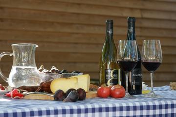 Tur for liten gruppe til Montserrat fra Barcelona: vin- og...