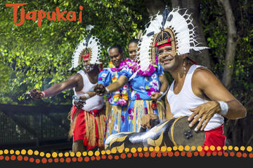 Cairns Combo: Tjapukai Aboriginal Cultural Park Morning Tour and...