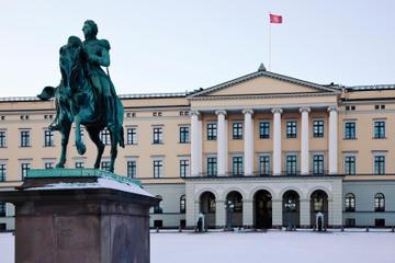 Fahrradtour durch Oslo in kleiner...