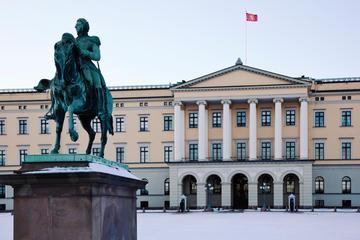 Fietstocht door Oslo met kleine ...