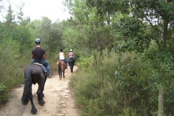 Promenade à cheval dans un parc...