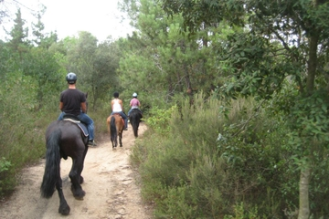 Trip vanuit Barcelona voor paardrijden in een natuurpark