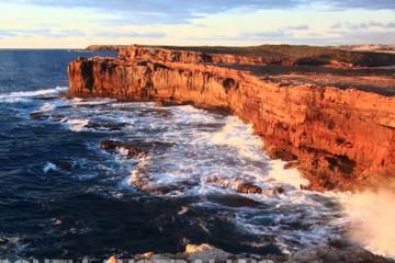 3-tägige Öko-Tour in kleiner Gruppe von Adelaide: Südliche Yorke...