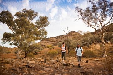 Excursão Ecológica de 3 Dias para Grupos Pequenos saindo de Adelaide...