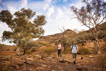 Tour ecoturístico para grupos pequeños de 3 días de duración desde...