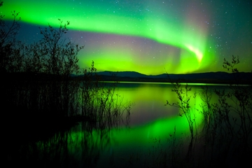 Tour des aurores boréales de 4 jours à Whitehorse au départ de...
