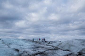 Glacier Encounter