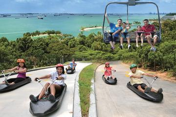 Skyline Luge Sentosa Admission Ticket