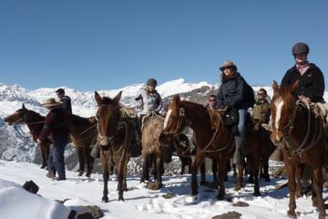 Escursione in montagna a cavallo da
