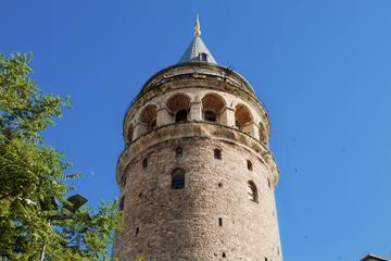 Excursão terrestre de Istambul: Excursão particular de um dia inteiro...