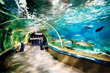 Viagem independente para compras em Aqua Florya e Aquário de Istambul