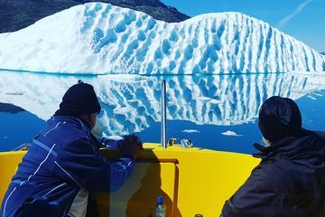 Glacier Cruise - Open boat