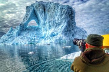 Glacier Cruise - Private charter 1-6 Passengers - Cabin boat
