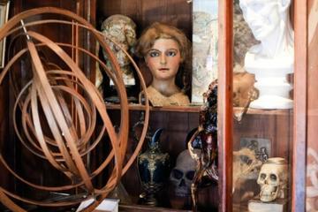 Mercado de pulgas St-Ouen: Excursão em busca de barganhas em Paris