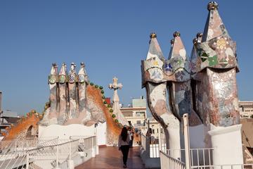 Sla de wachtrij over: wandeltocht Casa Batlló en Gaudí in Barcelona