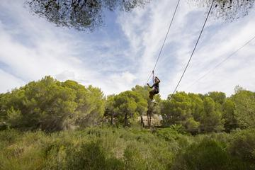 Jungle Parc Mallorca Ropes Course...