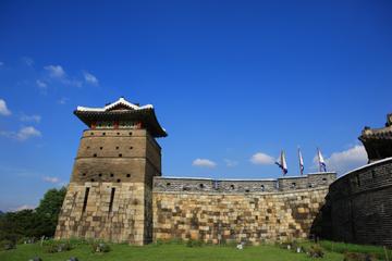 Festung Hwaseong und Führung durch das koreanische Folk Village ab...